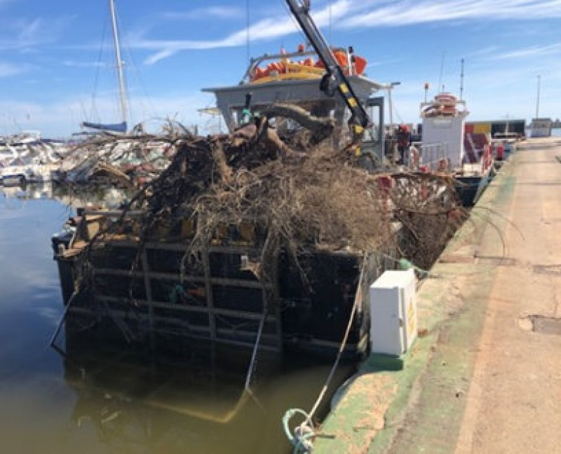 <span style='color:#780948'>ARCHIVED</span> - 25 rubbish containers among flood debris removed from the Mar Menor